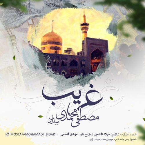 Mostafa Mohamadi Bidad&nbspGharib